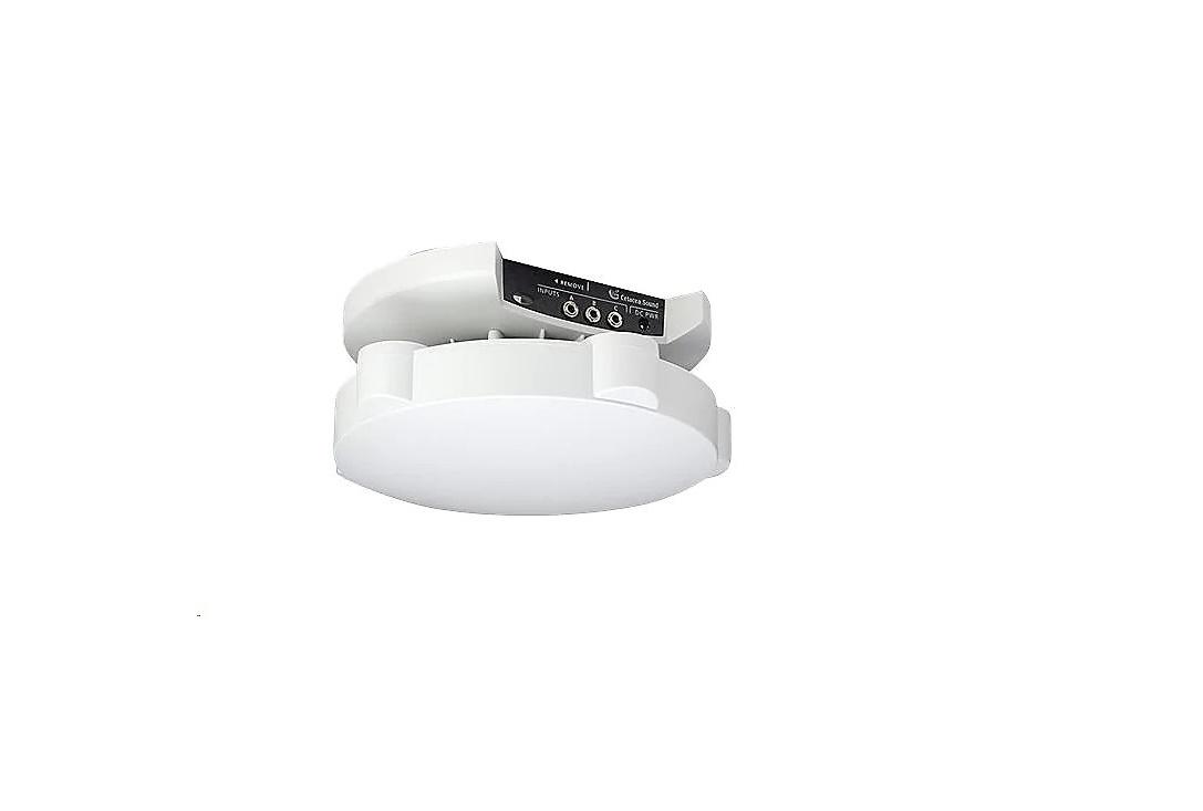 Cetacea Sound Astronaut XL Speaker For PA System ASTXLD1