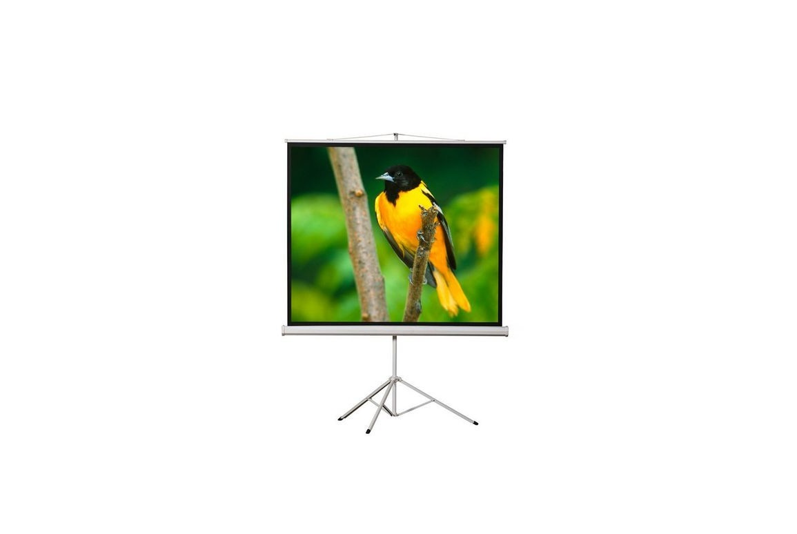 72 Elunevision 4x3 Portable Tripod Projection Screen EV-TR-72-1.2-43